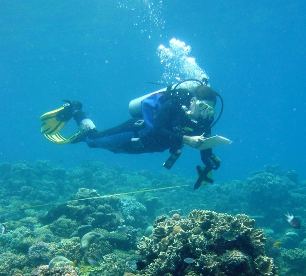 ANU's Chris Fulton measuring reef fish at Lizard Island. Credit: Neal Cantin